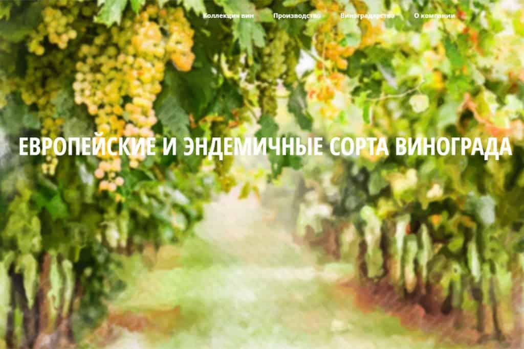 Website for vineyard